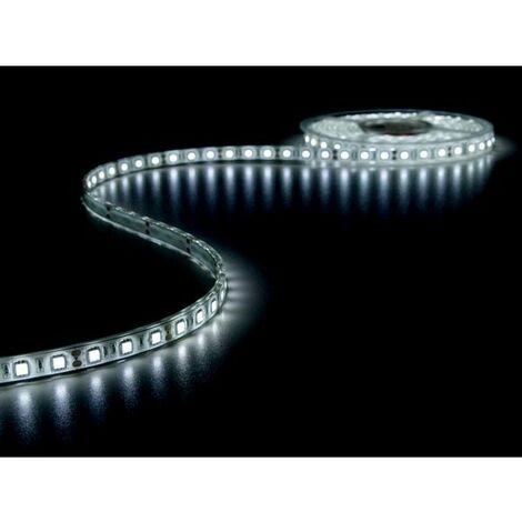 FLEXIBLE A LED - BLANC FROID 6500K - 300 LED - 5m - 12V (RI6890)
