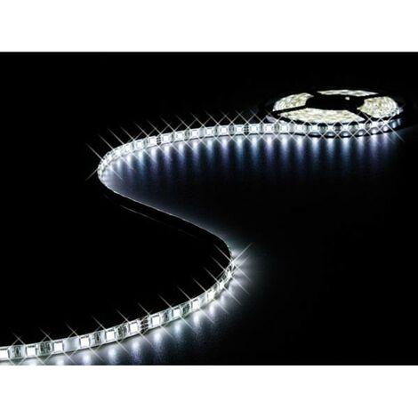 FLEXIBLE A LED - BLANC FROID 6500K - 300 LED - 5m - 24V (RI14807)