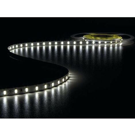 FLEXIBLE A LED - BLANC FROID 6500K - 300 LED - 5m - 24V (RI6857)