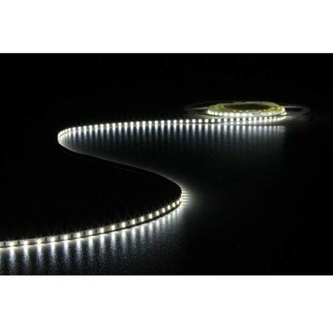 FLEXIBLE A LED - BLANC FROID 6500K - 600 LED - 5 M - 24 V (RI6884)