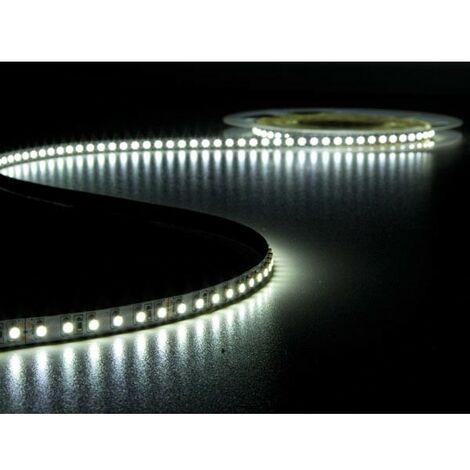 FLEXIBLE A LED - BLANC FROID 6500K - 600 LEDs - 5 m - 24 V (RI6863)
