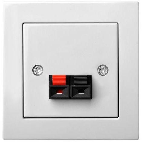 Flush Mounting Plug For Speaker 2 Clamps, Frameless
