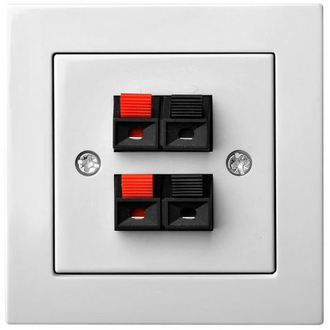 Flush Mounting Socket Loudspeaker 4 Clamps, Frameless