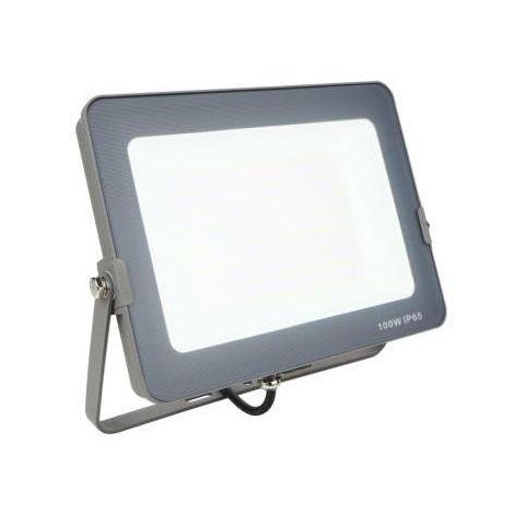 FOCO PLUS LED 100W 5700K 4000LM IP65