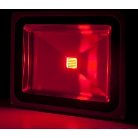 Foco Proyector LED IP65 Brico 50W 4250Lm 30.000H Rojo | Rojo (BQFS29050B-R)
