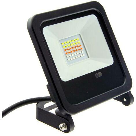Foco proyector LED RGB 30W IP65 con mando 24 teclas y estaca | RGB