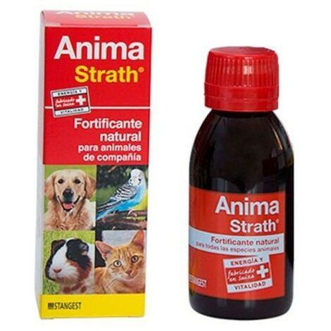 Fortificante reconstituyente ANIMA STRATH 100 ml