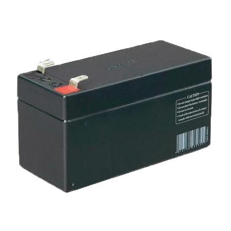 FR0748 Batterie de secours CAME 12V - CAME