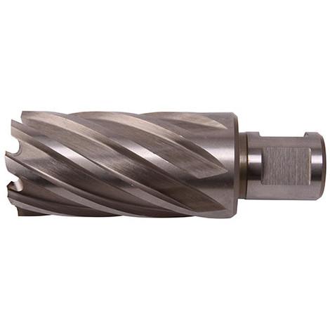 Fraise à métaux - Inox HSS M42 8% Cobalt D. 42.0 x Lu. 50 mm x Q. WELDON pour perceuse magnétique - LN420500 - Labor - -