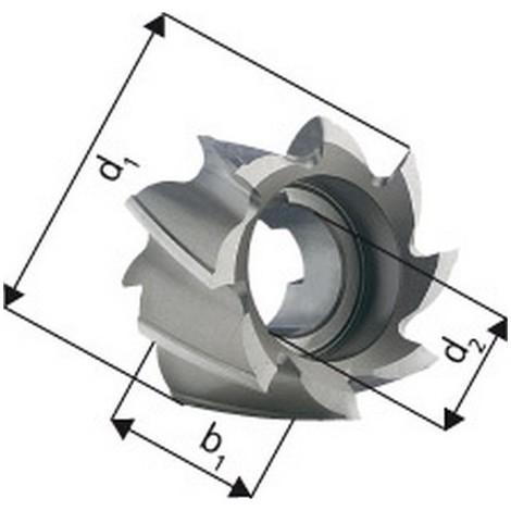 Fraise cylindrique en bout, Type N, 25°, en acier à coupe rapide à 5% de cobalt, Ø x Larg. : d1 - k10 x b1 - k16 : 50 x 36 mm, Alésage d2 - H7 22 mm