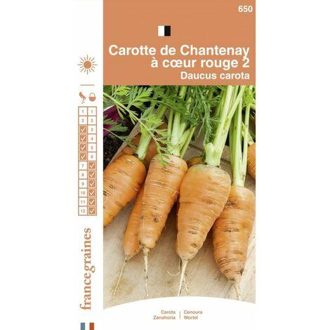 France Graines - Carotte Chantenay