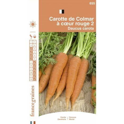 France Graines - Carotte Colmar