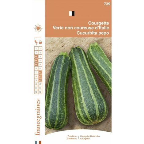 France Graines - Courgette non Coureuse