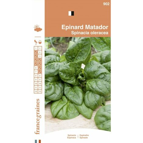 France Graines - Epinard Matador