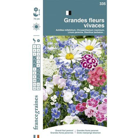 France Graines - Mélange Fleurs Vivaces Grandes