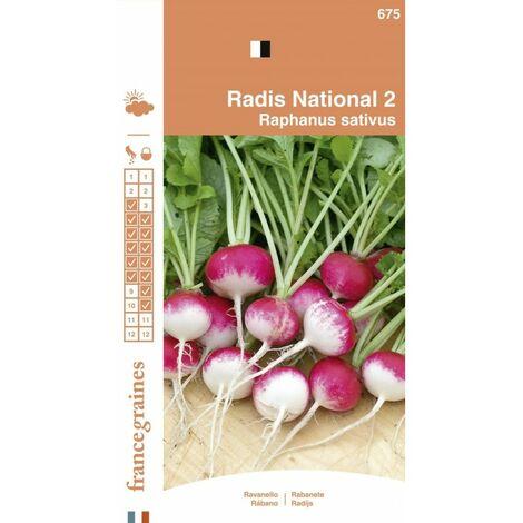 France Graines - Radis National