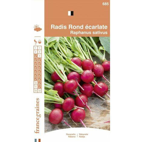 France Graines - Radis Rond Ecarlate