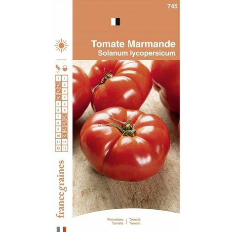 France Graines - Tomate Marmande