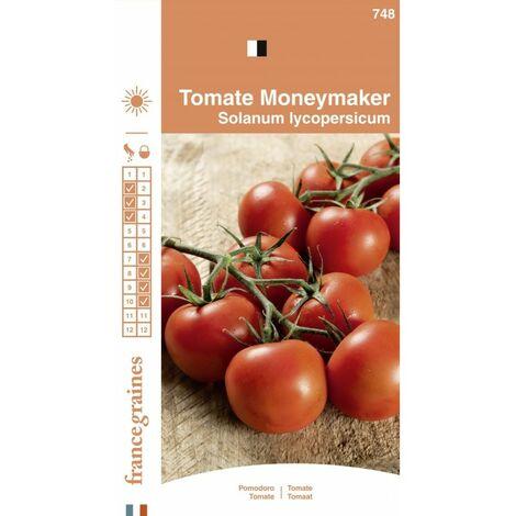 France Graines - Tomate Money Maker