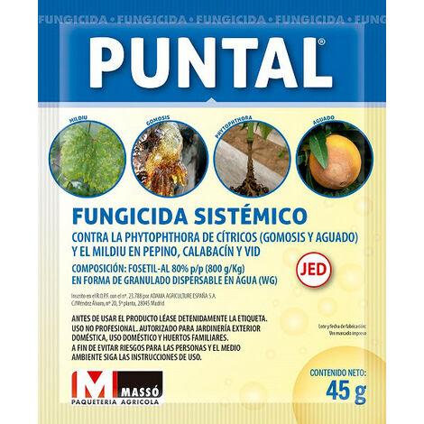 Fungicida Sistémico Puntal Massó