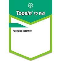 Fungicida Topsin 70 WG 1 Kg