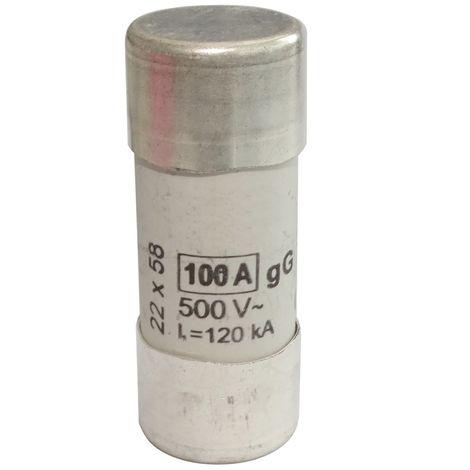 Fusible céramique gG 5.8cm 100A 500VAC 22x58mm