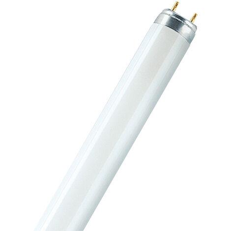 G13 Tube Fluorescent 15w FLUORA 77 Osram