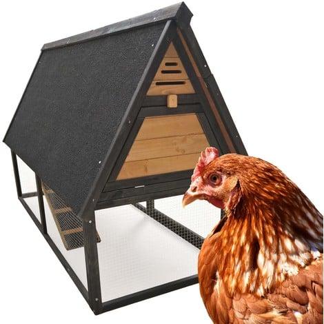Gallinero corral jaula gallinas pollos cría aves espacio zona abierta palo nidos