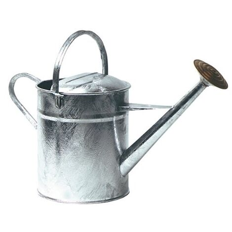 Galvanised Watering Can 2 Gallon Brass Rose Heavy Galv