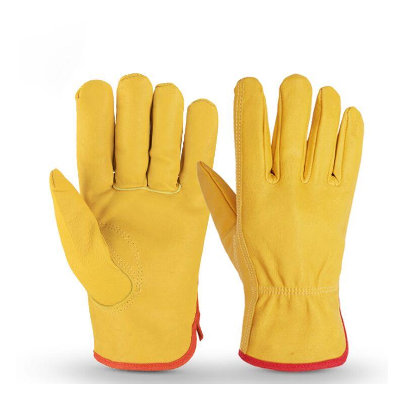 Gants résistants à l'usure cinq doigts Gants de moto sports outdoor jaune M - Triomphe