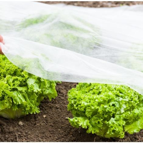 Gartenvlies für Frühbeete | Gartenvlies für Frühbeete 5x1,5m weiß