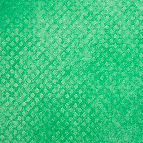 Gartenvlies für Frühbeete | Gartenvlies für Frühbeete grün 10x1,5m