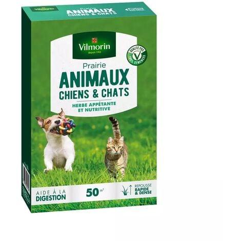 Gazon prairie Chiens et chats 500 gr vilmorin