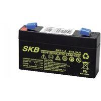 Gbs batteria al piombo ricaricabile 6v 1,3ah 98x24x52mm 38. 6201. 25