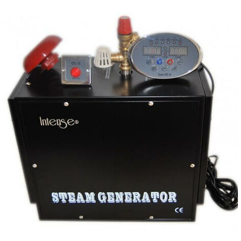 Generador de vapor profesional intenso 4 kw para Hamam (exposición 3 a 5 m3)