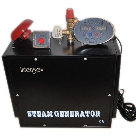 Générateur de vapeur professionnel Intense 4 kw pour Hammam (pièce de 3 à 5 m3)