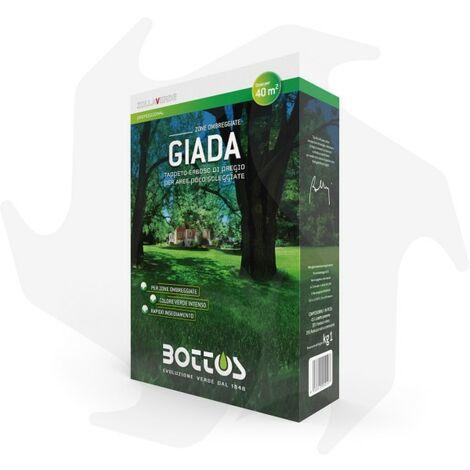 Giada Bottos - 1Kg Sementi evolute per prato ombreggiato