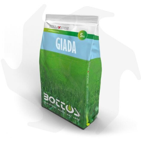Giada Bottos - 5Kg Sementi evolute per prato ombreggiato