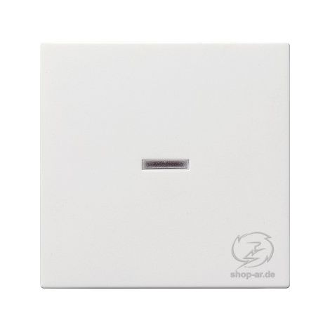 Gira Serienwippen mit Kontrollfenster reinweiß glänzend System 55  063103