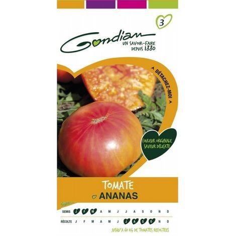 Gondian - Tomate Ananas