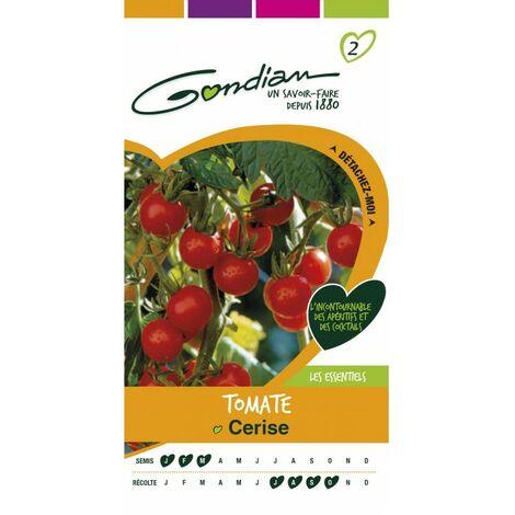 Gondian - Tomate Cerise