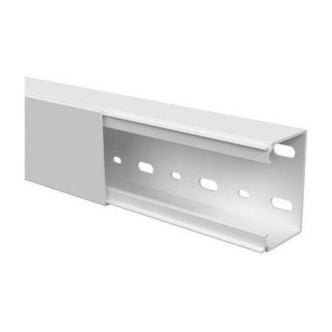 Goulotte de câble GGK LFG40x60alpinweiß 11030 (L x l x h) 2000 x 60 x 40 mm 1 pc(s) blanc pur