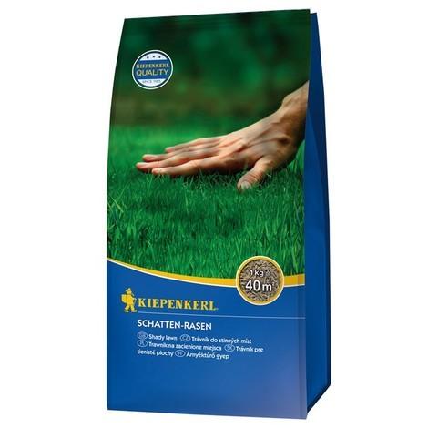 Graine gazon spécial zone ombragée 1 kg