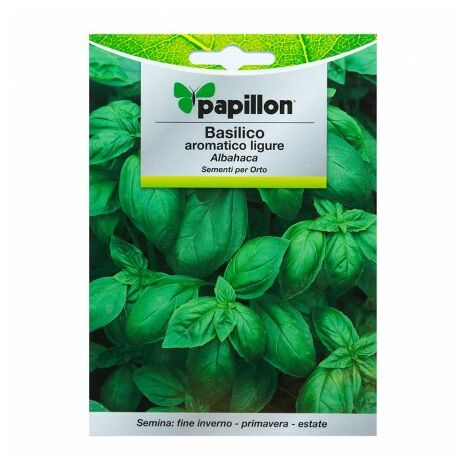Graines aromatiques basilic aromatica (5 grammes) horticulture, horticola, graines verger.