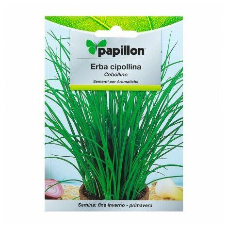 Graines aromatiques ciboulette (1 gramme) horticulture, horticola, graines verger.