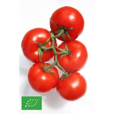 graines BIO de Tomates - sachet de ~25 graines (0,5g)