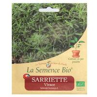 Graines Bio - Sarriette Vivace 0.2g - La Semence Bio