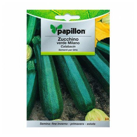 Graines calabacin vert foncé (5 grammes) graines légumes, horticulture, horticola, graines verger.