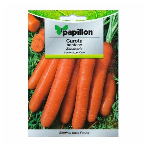 Graines carottes nantes temprana (7 grammes). graines légumes, horticulture, horticola, graines verger.