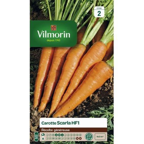 Graines de carotte scarla
